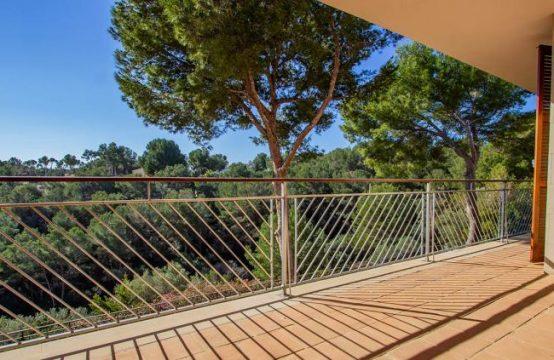 Wunderbare Wohnung in sehr Gepflegter Anlage mit Meerblick in Sol de Mallorca | Ref.: 12016