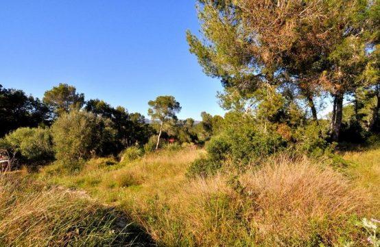 Baugrundstück in Santa Ponsa, Mallorca | Ref.: 10567