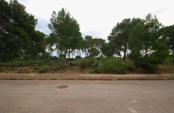 Grundstück in guter Lage in Nova Santa Ponsa, Mallorca | Ref.: 8778