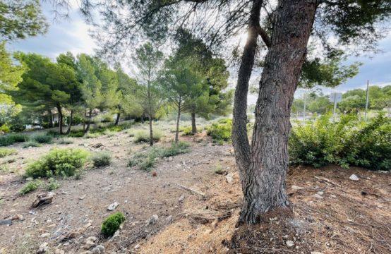 Grundstück in Santa Ponsa   Ref.: 12889